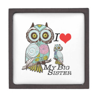 I-Love my-big Sister Owls  Multiple Product Select Premium Trinket Boxes