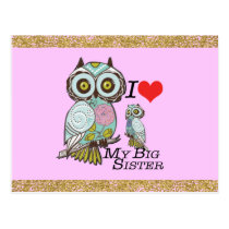 I-Love my-big Sister Owls  Postcard