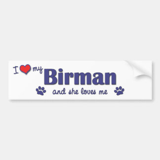 I Love My Birman (Female Cat) Bumper Sticker