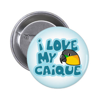 I Love My Black Headed Caique Button