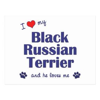 I Love My Black Russian Terrier (Male Dog) Postcard