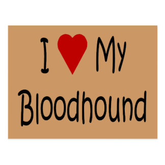 I Love My Bloodhound Dog Lover Gifts and Apparel Post Cards