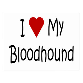 I Love My Bloodhound Dog Lover Gifts and Apparel Postcard
