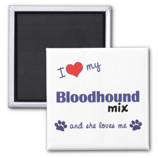 I Love My Bloodhound Mix (Female Dog) 2 Inch Square Magnet