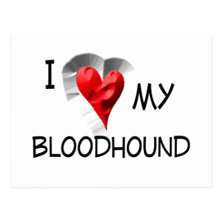 I Love My Bloodhound Postcard