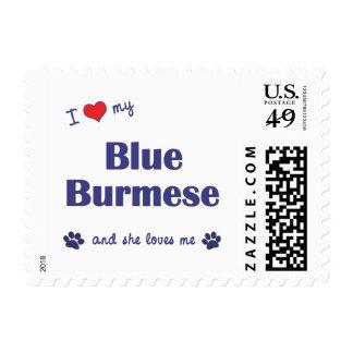 I Love My Blue Burmese (Female Cat) Postage