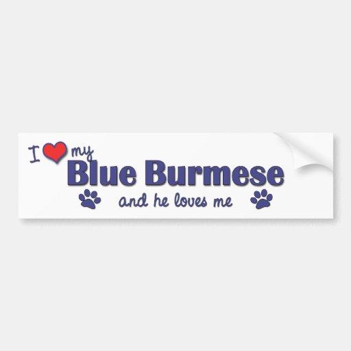I Love My Blue Burmese (Male Cat) Bumper Sticker