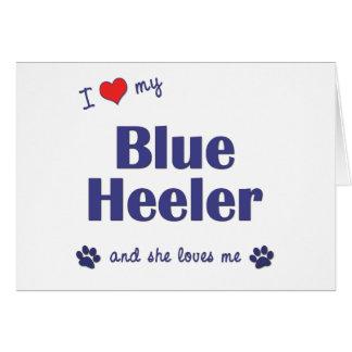 I Love My Blue Heeler (Female Dog) Card