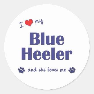 I Love My Blue Heeler (Female Dog) Classic Round Sticker