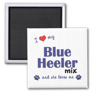 I Love My Blue Heeler Mix (Female Dog) Refrigerator Magnet