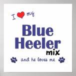 I Love My Blue Heeler Mix (Male Dog) Poster