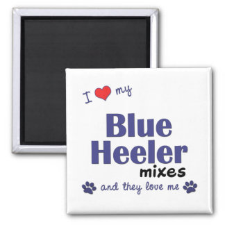 I Love My Blue Heeler Mixes (Multiple Dogs) Magnet