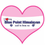 I Love My Blue Point Himalayan (Male Cat) Acrylic Cut Out
