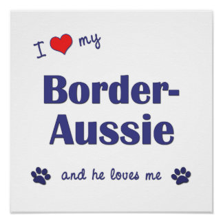 I Love My Border-Aussie Male Dog Print