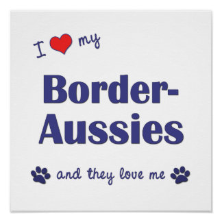 I Love My Border-Aussies (Multiple Dogs) Poster