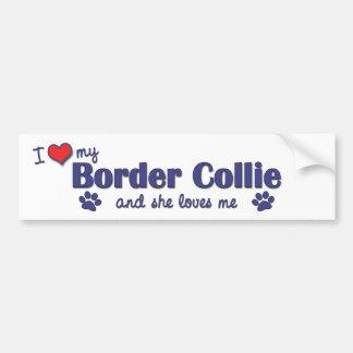 I Love My Border Collie (Female Dog) Bumper Sticker