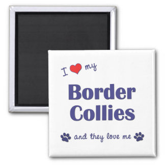 I Love My Border Collies (Multiple Dogs) 2 Inch Square Magnet