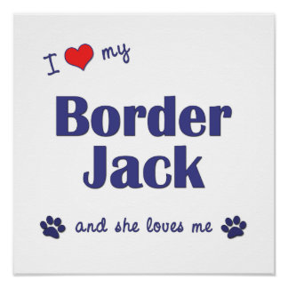 I Love My Border Jack Female Dog Poster