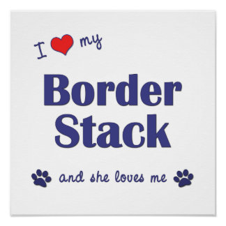 I Love My Border Stack Female Dog Poster