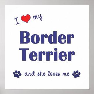 I Love My Border Terrier Female Dog Poster