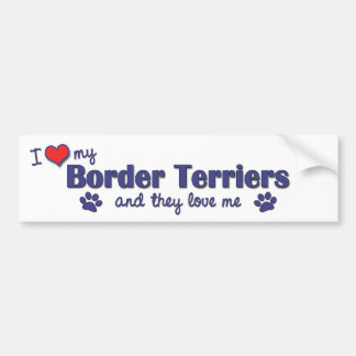 I Love My Border Terriers (Multiple Dogs) Bumper Sticker