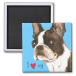 I Love my Boston Terrier 2 Inch Square Magnet