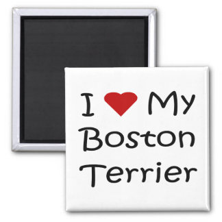 I Love My Boston Terrier Dog Lover Gifts 2 Inch Square Magnet