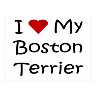 I Love My Boston Terrier Dog Lover Gifts Postcard