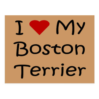 I Love My Boston Terrier Dog Lover Gifts Post Cards