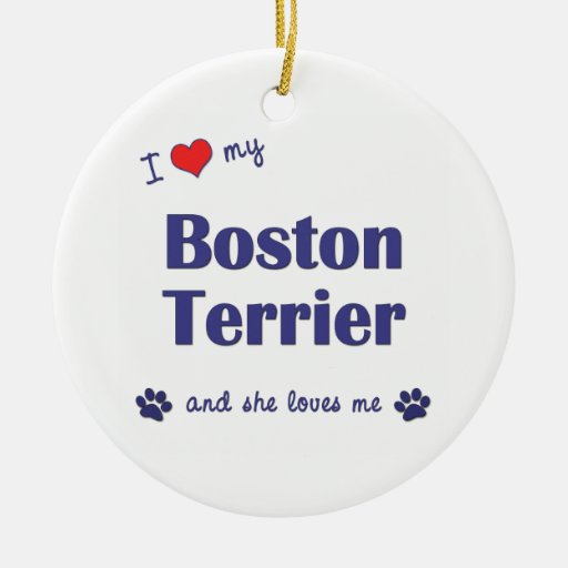 I Love My Boston Terrier (Female Dog) Christmas Ornament