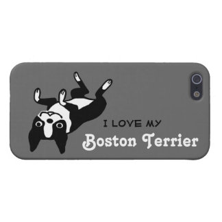 I Love My Boston Terrier iPhone SE/5/5s Cover