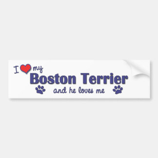 I Love My Boston Terrier (Male Dog) Bumper Stickers