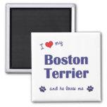 I Love My Boston Terrier (Male Dog) Fridge Magnets