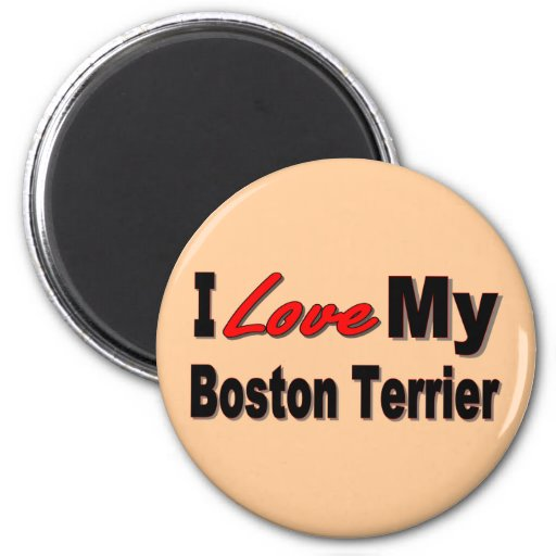 I Love My Boston Terrier Merchandise Refrigerator Magnets