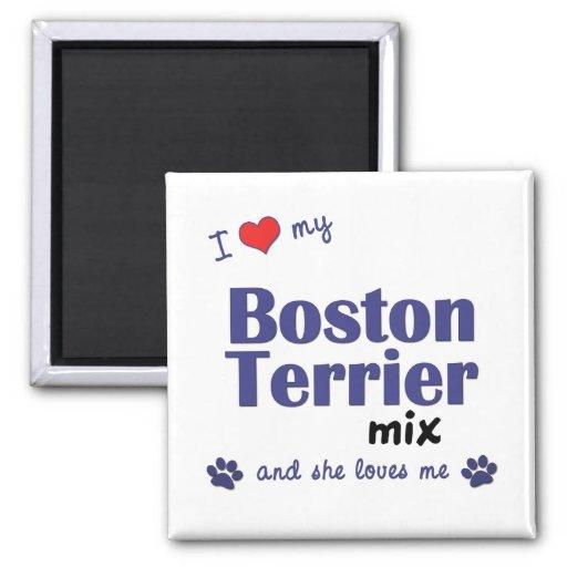 I Love My Boston Terrier Mix (Female Dog) Magnets