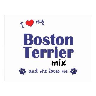 I Love My Boston Terrier Mix (Female Dog) Postcard