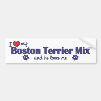 I Love My Boston Terrier Mix (Male Dog) Bumper Sticker