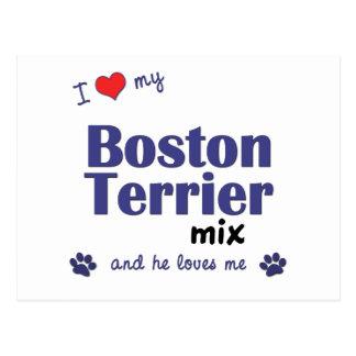 I Love My Boston Terrier Mix (Male Dog) Postcard