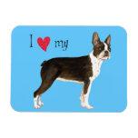 I Love my Boston Terrier Rectangle Magnets