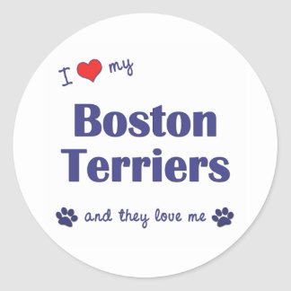 I Love My Boston Terriers (Multiple Dogs) Classic Round Sticker