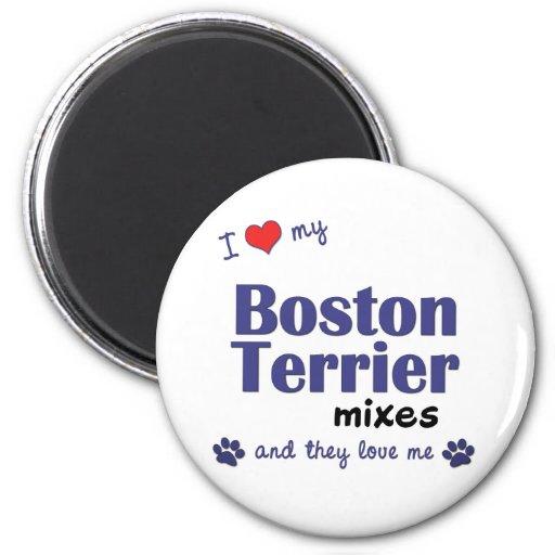 I Love My Boston Terriers (Multiple Dogs) Fridge Magnets