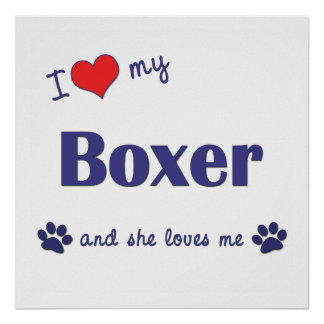 I Love My Boxer (Female Dog) Poster