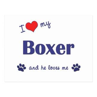 I Love My Boxer (Male Dog) Postcard