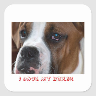 I Love My Boxer Sticker
