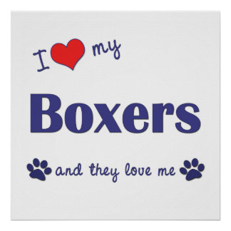 I Love My Boxers (Multiple Dogs) Poster