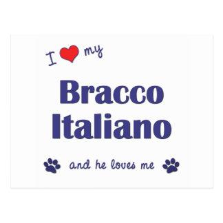 I Love My Bracco Italiano (Male Dog) Postcard