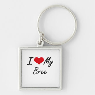 I love my Bree Silver-Colored Square Keychain