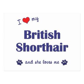 I Love My British Shorthair (Female Cat) Postcard