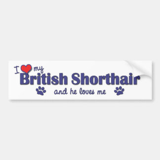 I Love My British Shorthair (Male Cat) Bumper Sticker