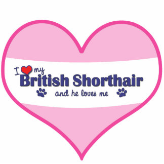 I Love My British Shorthair (Male Cat) Cut Outs